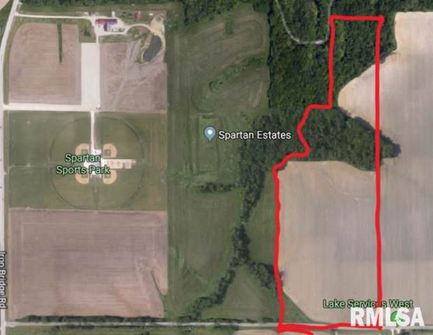 Woodland Trail, Chatham, IL 62629 (#CA2326) :: Killebrew - Real Estate Group