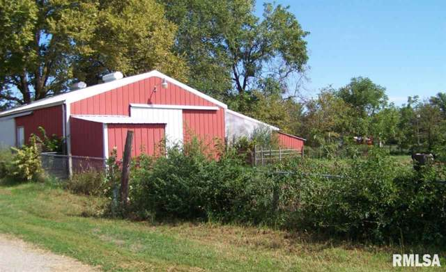 1006 S 12TH Street, Keithsburg, IL 61442 (#QC4206137) :: Paramount Homes QC