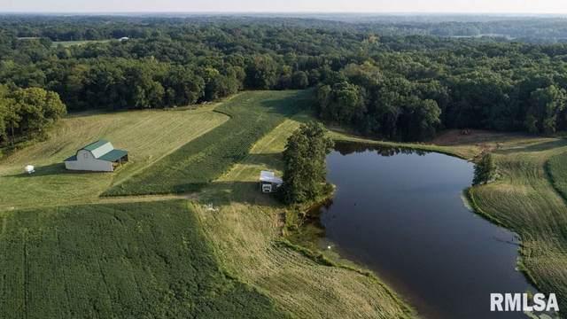 1069 E County Rd 2753, Clayton, IL 62324 (#CA2526) :: Adam Merrick Real Estate