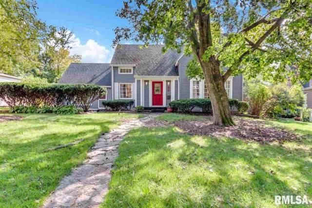 132 E Oak Park Drive, Peoria, IL 61614 (#PA1209525) :: Killebrew - Real Estate Group