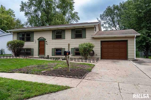 306 2ND Avenue, De Witt, IA 52742 (#QC4206599) :: Paramount Homes QC