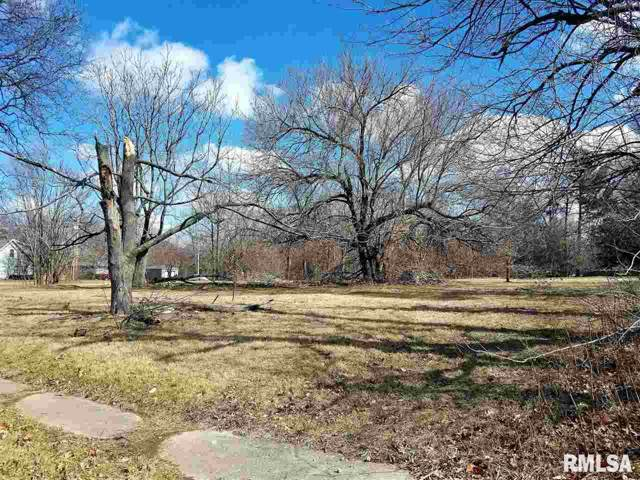 502 & 506 S Ricketts Avenue, Bartonville, IL 61607 (#PA1209788) :: Adam Merrick Real Estate