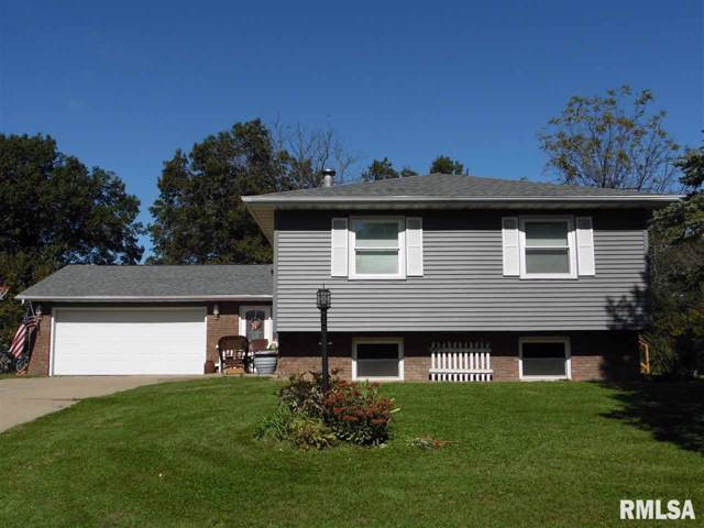 4317 S Newcastle Court, Mapleton, IL 61547 (#PA1209892) :: Adam Merrick Real Estate