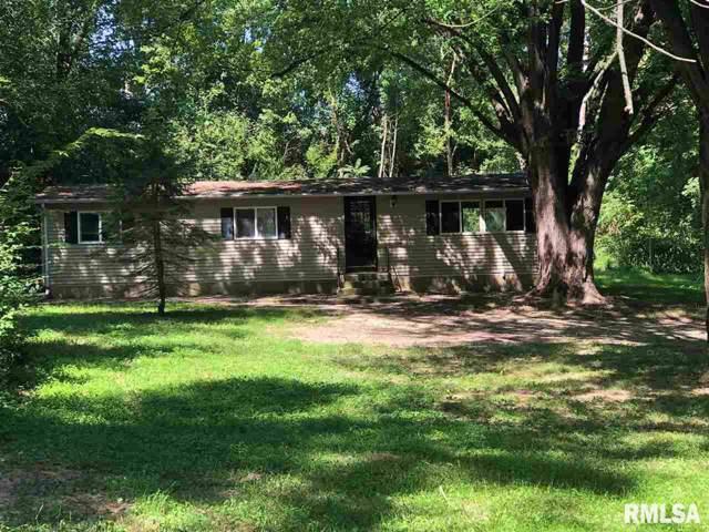 5824 N Main Street, East Peoria, IL 61611 (#PA1209928) :: Adam Merrick Real Estate