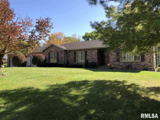 8420 Old Jacksonville Road, Pleasant Plains, IL 62677 (#CA996040) :: Killebrew - Real Estate Group