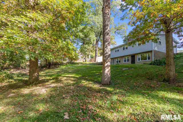 2542-2544 6TH Street Court, East Moline, IL 61244 (#QC4207057) :: Adam Merrick Real Estate