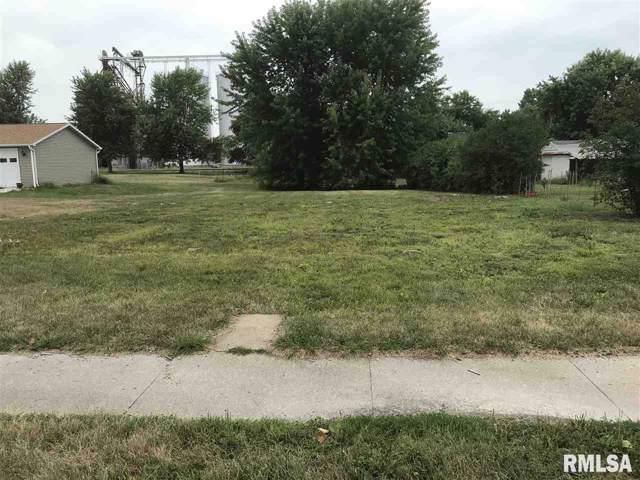 500 E Washington Street, Blandinsville, IL 61420 (#PA1210102) :: Adam Merrick Real Estate