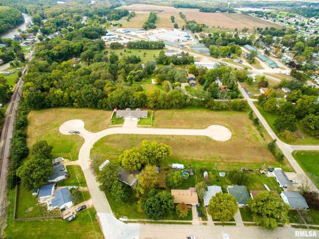 1538 Arnold Court, Camanche, IA 52730 (#QC4207391) :: Killebrew - Real Estate Group