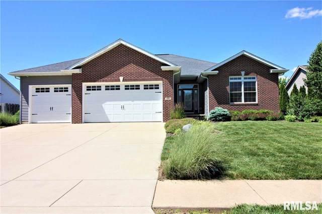 355 Meredith Drive, Sherman, IL 62684 (#CA997200) :: Killebrew - Real Estate Group