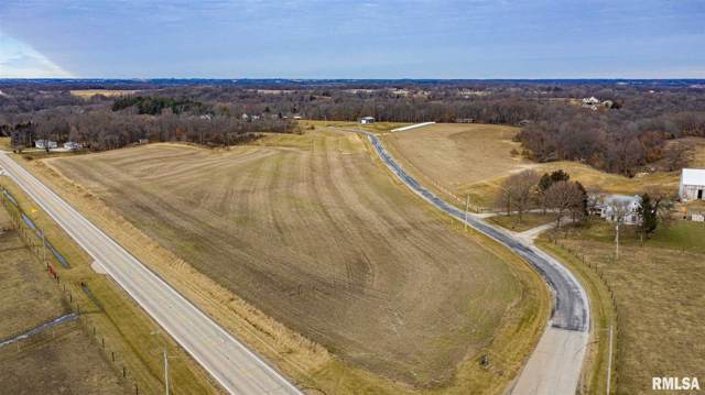 0 W Rockhill Road, Brimfield, IL 61517 (#PA1211865) :: Adam Merrick Real Estate