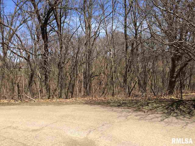 2810 Overlook Court, Camanche, IA 52730 (#QC4208710) :: RE/MAX Preferred Choice