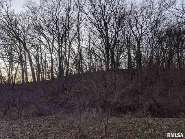 00 Snake Den Road, Williamsfield, IL 61489 (#PA1211926) :: The Bryson Smith Team