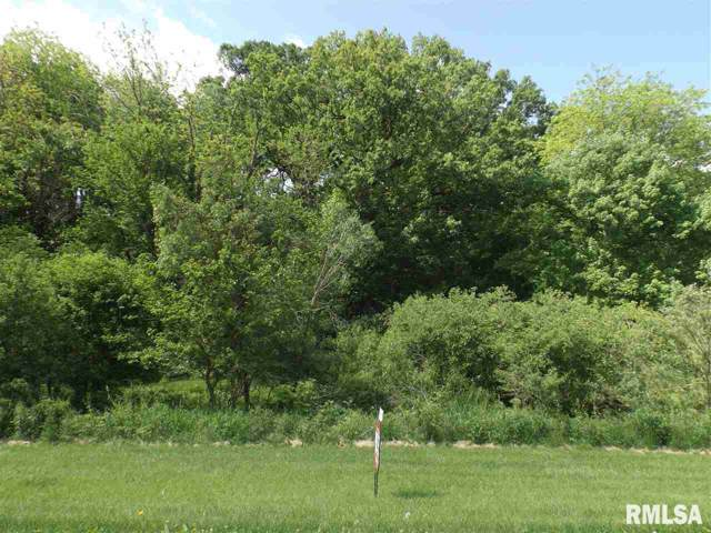 52 W Timberline Drive, Blue Grass, IA 52726 (#QC4208877) :: Killebrew - Real Estate Group