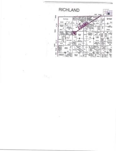 1400 Hickory Grove Road, Lacon, IL 61540 (#PA1212049) :: Killebrew - Real Estate Group