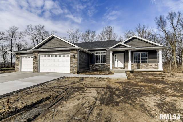 3421 Mazon Court, Springfield, IL 62711 (#CA997588) :: Killebrew - Real Estate Group