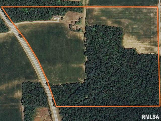 8717 State Rt 97, Kilbourne, IL 62655 (#CA997869) :: Killebrew - Real Estate Group