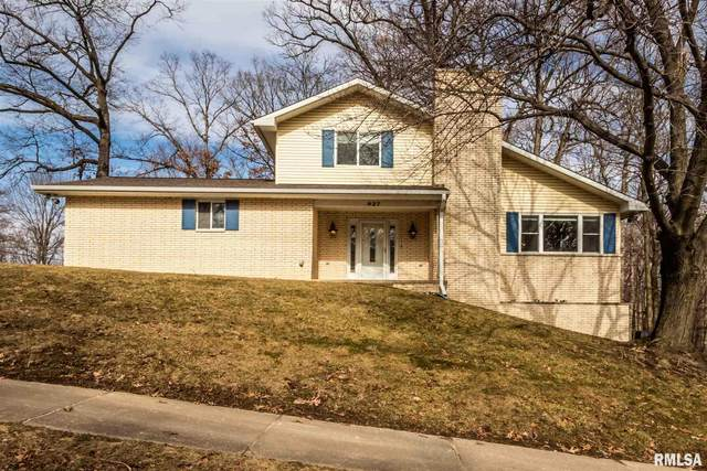 927 W Wonderview Drive, Dunlap, IL 61525 (#PA1212471) :: The Bryson Smith Team