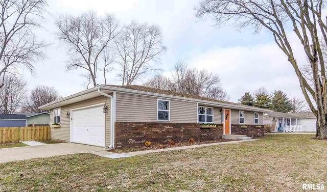 29 Pheasant Run, Chatham, IL 62629 (#CA998004) :: Killebrew - Real Estate Group