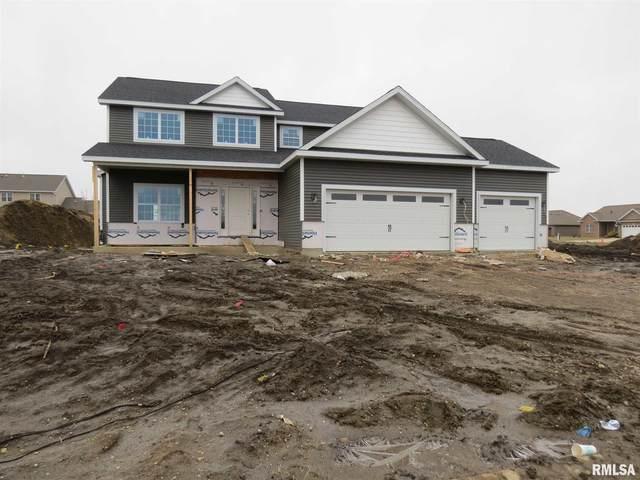 921 White Ash Ln Lane, Williamsville, IL 62693 (#CA998039) :: Killebrew - Real Estate Group
