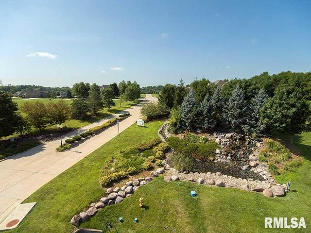 24 S Pebble Creek Circle, Le Claire, IA 52753 (#QC4209376) :: Killebrew - Real Estate Group