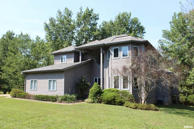 247 Lake Indian Hills Drive, Carbondale, IL 62902 (#EB432869) :: Killebrew - Real Estate Group