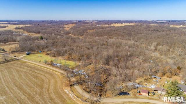 29502 Bitner Road, Glasford, IL 61533 (#PA1212738) :: The Bryson Smith Team