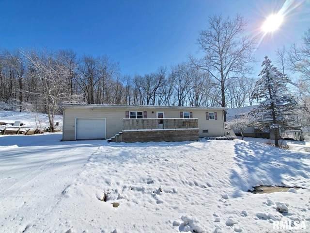 1130 N Nancy Street, East Peoria, IL 61611 (#PA1212834) :: Adam Merrick Real Estate