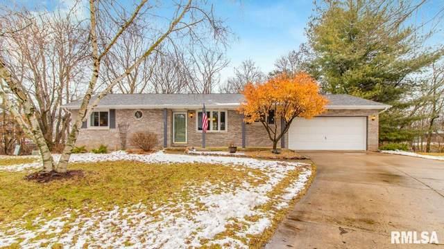 206 Clayton Court, East Peoria, IL 61611 (#PA1212877) :: Adam Merrick Real Estate