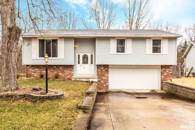 143 Devron Circle, East Peoria, IL 61611 (#PA1212973) :: Adam Merrick Real Estate
