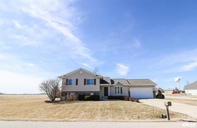 106 Eisenhower Street, Hopedale, IL 61747 (#PA1213389) :: The Bryson Smith Team