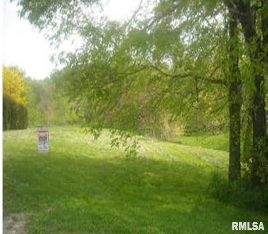 Lot 42 10TH Avenue, Viola, IL 61486 (#QC4209908) :: Killebrew - Real Estate Group
