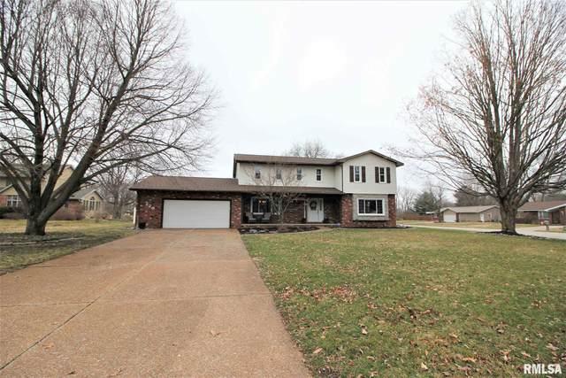 220 Middleburg Drive, Sherman, IL 62684 (#CA998535) :: Killebrew - Real Estate Group