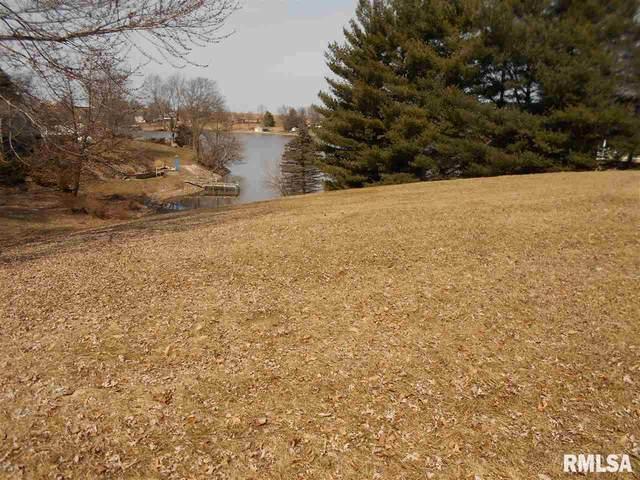315 & 316 Lakeview Drive, Avon, IL 61415 (#PA1213466) :: Nikki Sailor | RE/MAX River Cities
