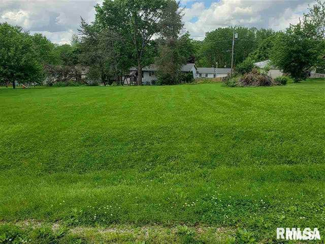 141 Henry Drive, Orion, IL 61273 (#QC4210276) :: RE/MAX Preferred Choice