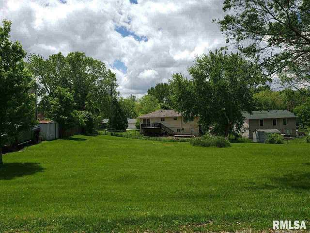 147 Henry Drive, Orion, IL 61273 (#QC4210277) :: Nikki Sailor | RE/MAX River Cities