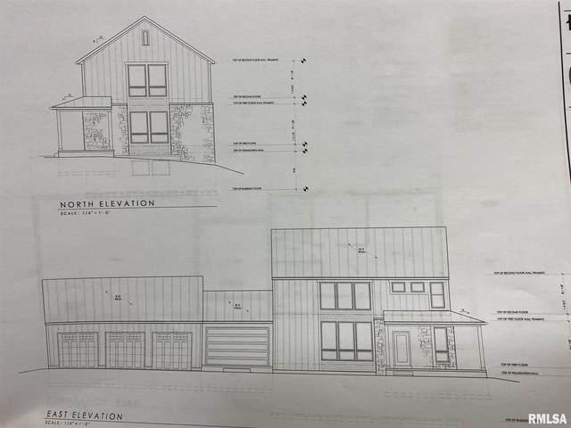 Lot1 N 1100th Avenue, Lynn Center, IL 61262 (#QC4210486) :: Paramount Homes QC