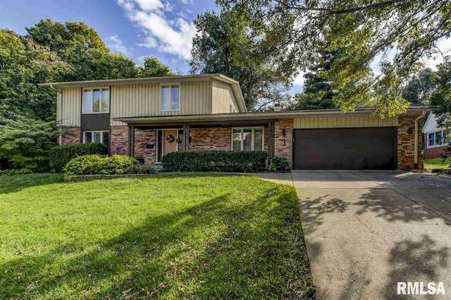 3 Bridge Terrace Road, Springfield, IL 62704 (#CA998987) :: Killebrew - Real Estate Group