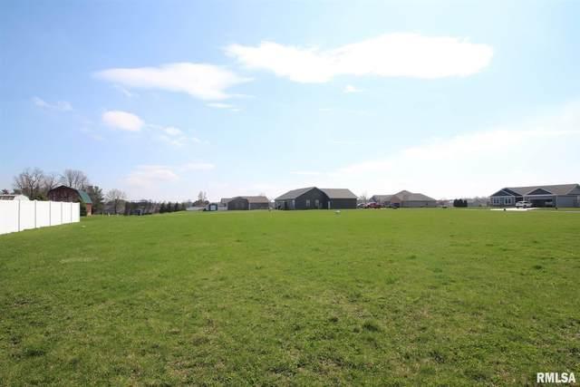 Lot 78 Haymeadow Lane, Metamora, IL 61548 (#PA1214016) :: Killebrew - Real Estate Group