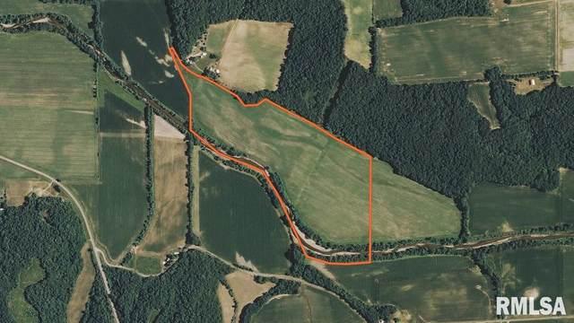 1680 County Road 1245N, Lacon, IL 61540 (#CA999178) :: Killebrew - Real Estate Group