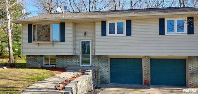 4748 S Sir Lancelot Court, Mapleton, IL 61547 (#PA1214350) :: The Bryson Smith Team