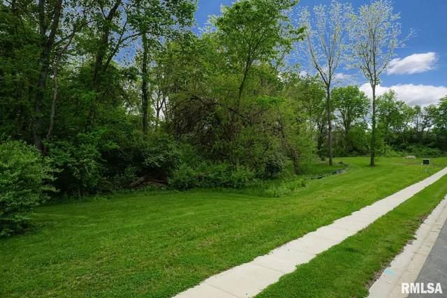 3400 Cash River Road, Springfield, IL 62711 (#CA999568) :: Kathy Garst Sales Team