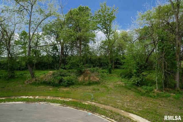 613 Rock River Road, Springfield, IL 62711 (#CA999573) :: Kathy Garst Sales Team