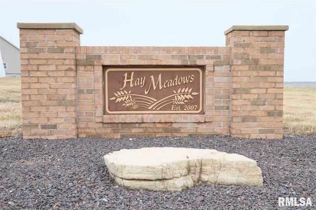 LOT 58 Hay Meadows Lane, Metamora, IL 61548 (#PA1215129) :: RE/MAX Preferred Choice