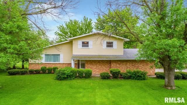 306 E Ash Street, Elmwood, IL 61529 (#PA1215167) :: Adam Merrick Real Estate