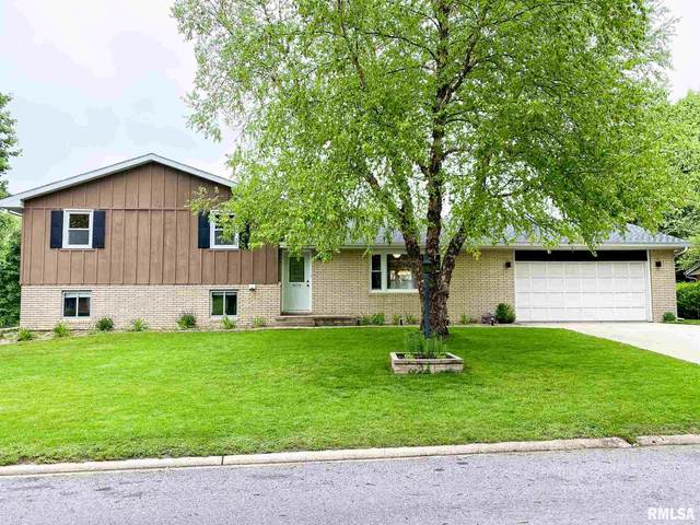 713 Curtis Court, Eureka, IL 61530 (#PA1215191) :: The Bryson Smith Team