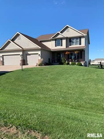 503 Somerset Drive, Germantown Hills, IL 61548 (#PA1215240) :: Adam Merrick Real Estate
