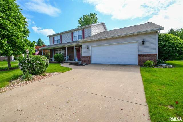 10722 N Lauraline Court, Peoria, IL 61615 (#PA1215311) :: Adam Merrick Real Estate