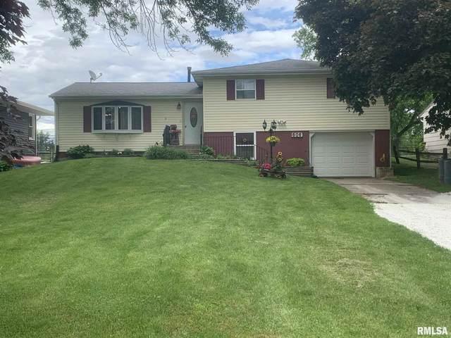 606 Greenway Avenue, COLONA, IL 61241 (#QC4211892) :: Paramount Homes QC