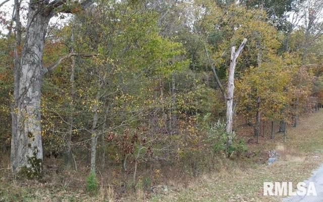 49 Bridal Lane, Eddyville, IL 62928 (#CA1000210) :: Adam Merrick Real Estate