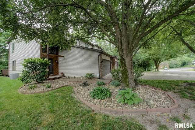 12 Holiday Road, Springfield, IL 62702 (#CA1000410) :: Killebrew - Real Estate Group